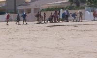 Playa - Guadamar (15)