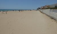 Playa - Guadamar (2)