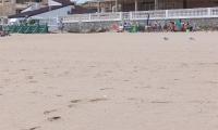 Playa - Guadamar (3)