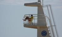 Playa La Marina (10)