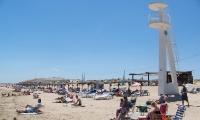 Playa La Marina (16)
