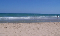 Playa La Marina (1)