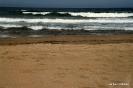 Playa La Mata (4)
