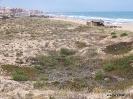Playa La Mata (7)